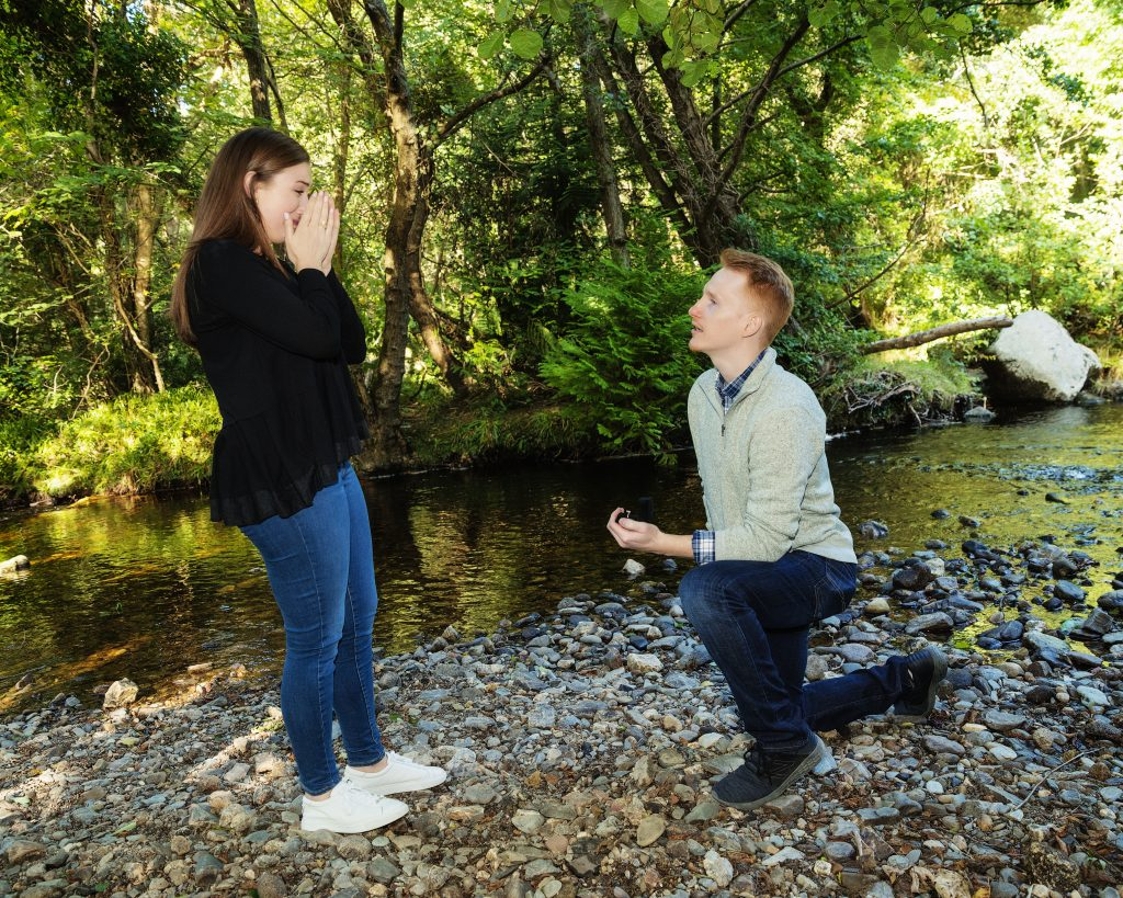 A proposal at Powerscourt